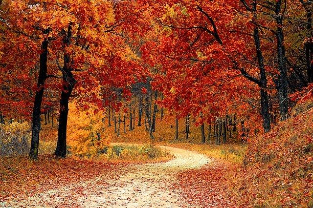 Aufgepasst! Herbstspecial!